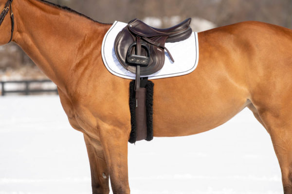 Equestrian tack made with responsible wool